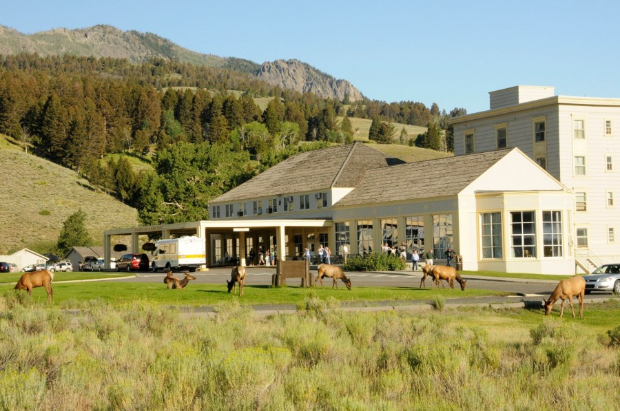 Mammoth Hot Springs Amp Cabins Vacations To America