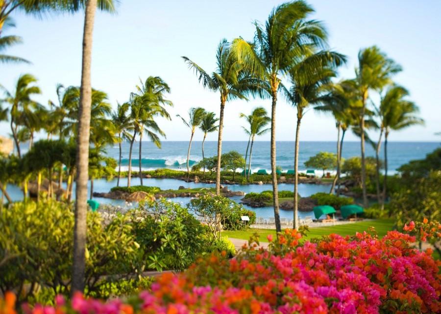 Hawaiian gardens casino grand opening - Emerald queen casino hours